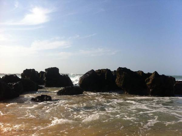 baia-formosa-rio-grande-do-norte-brasil-thais-ta-longe (4)